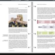 PSO Handbuch Inhaltsbeispiel